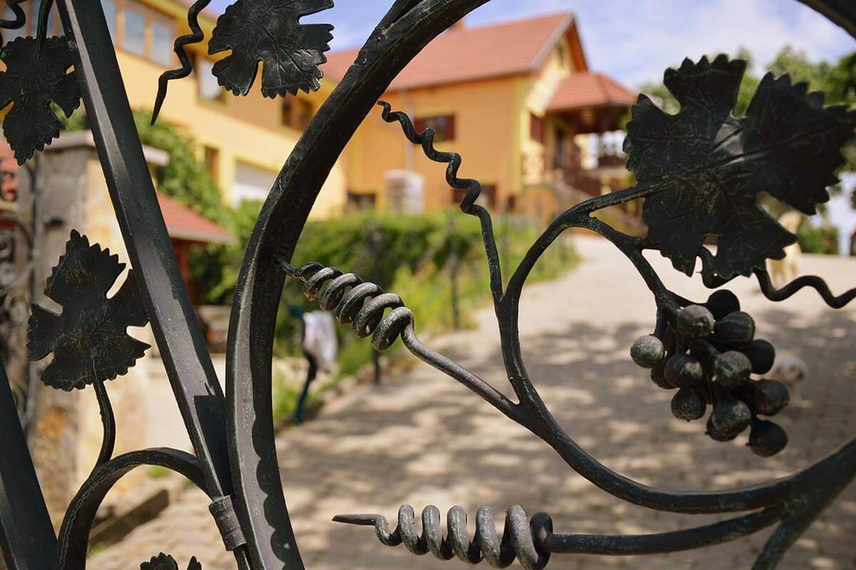Kapu - Bussay Pincészet - Csörnyeföld