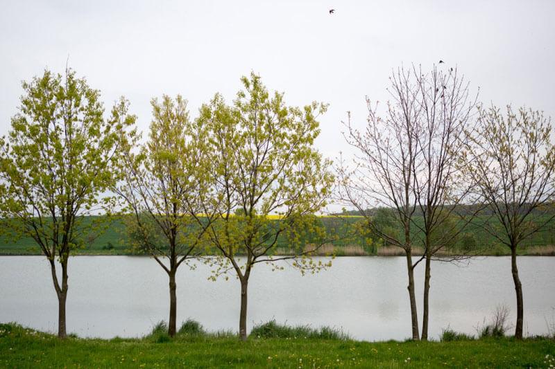 Kisperházi tó - Szepetnek